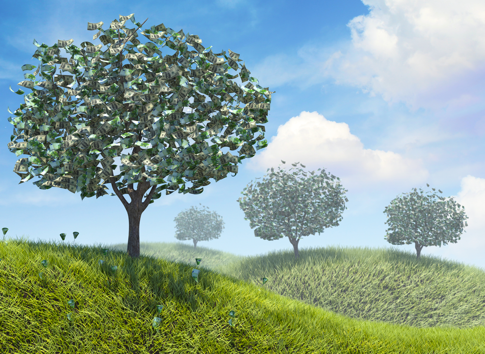 money-growing-trees-nature-30885273-02